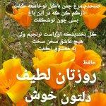 IMG_20201217_115030_268.jpg