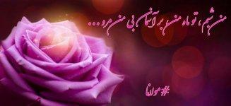 IMG_20210108_095543_603.jpg
