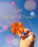 IMG_20210111_105721_790.jpg