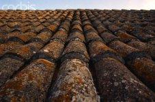 Tiled Rooftop in Dubrovnik.jpg