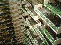 hyatt-regency-atlanta.jpg
