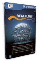 1361274762_realflow.jpg
