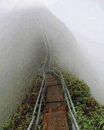 Stairway to Heaven, Island of Oahu, Hawaii.jpg
