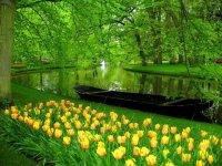 Keukenhof Gardens, Lisse, The Netherlands.jpg