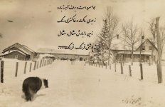 Krause Farm with Dog Looking North in Winter.jpg